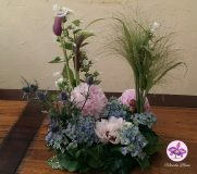 Bloemen In Een Tuintje